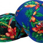 15-apache_hawaiian_5_panel_1329739053